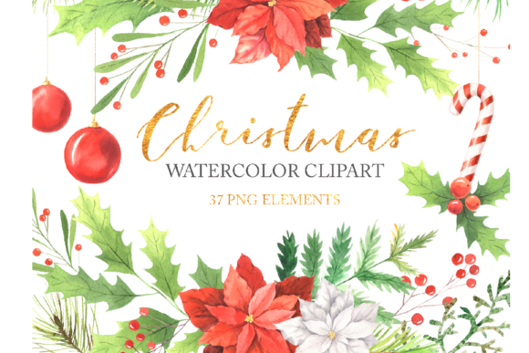 Watercolor Christmas Floral Clipart Graphic Illustrations By Larysa Zabrotskaya