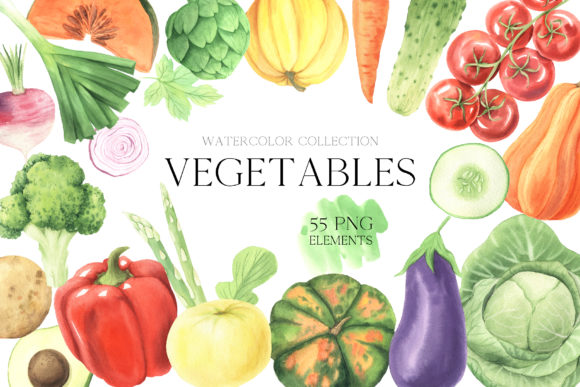 Watercolor Fall Vegetables Clipart Set Graphic Illustrations By Larysa Zabrotskaya