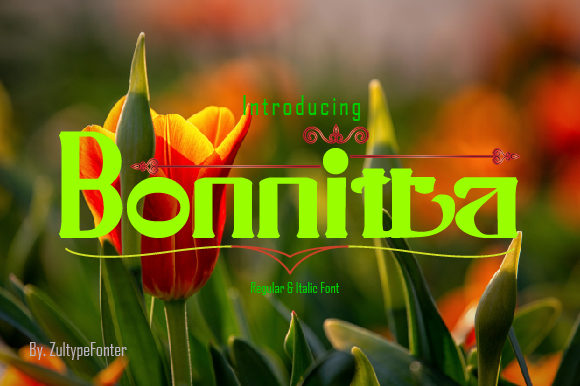 Print on Demand: Bonnitta Serif Font By ZultypeFonter