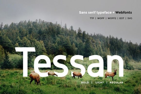 Print on Demand: Tessan Sans Serif Font By Webhance