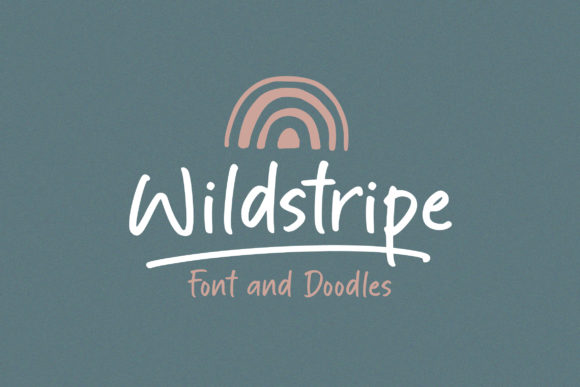 Print on Demand: Wildstripe Script & Handwritten Schriftarten von Ef Studio
