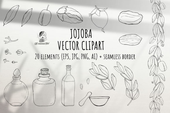 Vector Black Set of  Jojoba Elements Graphic Illustrations By Komanna_Art
