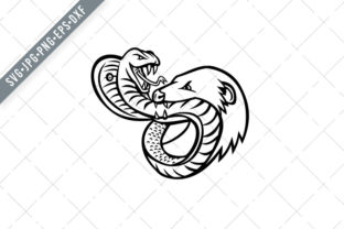 Print on Demand: King Cobra Snake and Mongoose Fighting Graphic Illustrations By patrimonio