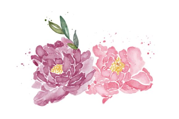Print on Demand: Peonies Flower Watercolor Realistic PNG Graphic Illustrations By goodigital