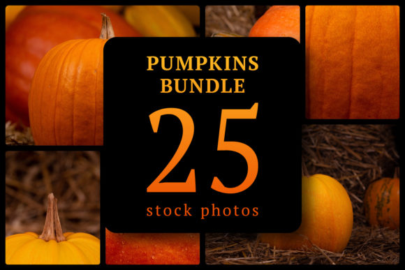 Pumpkins Bundle 25 Stock Photos Graphic Food & Drinks By lunarts