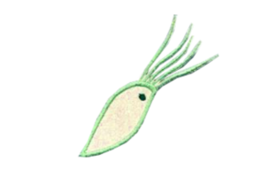 Sea Life 11 Fish & Shells Embroidery Design By Sookie Sews