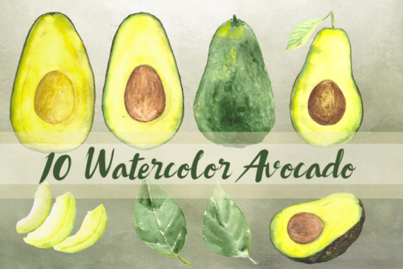 10 Watercolor Avocado Clip Art Set Graphic Illustrations By tatibordiu