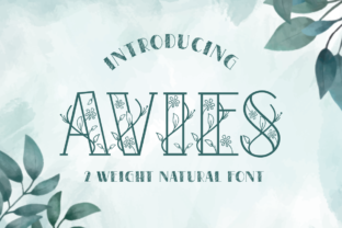 Print on Demand: Avies Decorative Font By artype07