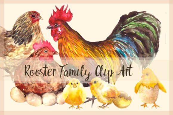 Rooster Family - Watercolor Clip Art Graphic