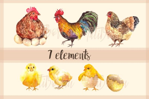 Rooster Family - Watercolor Clip Art Graphic Download