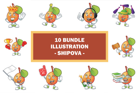 Shipova Bundle Graphic Illustrations By KongVector2020