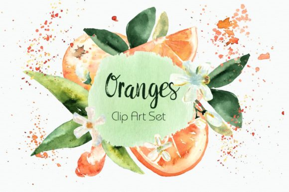 Watercolor Oranges Clipart + Wreath Graphic Illustrations By tatibordiu