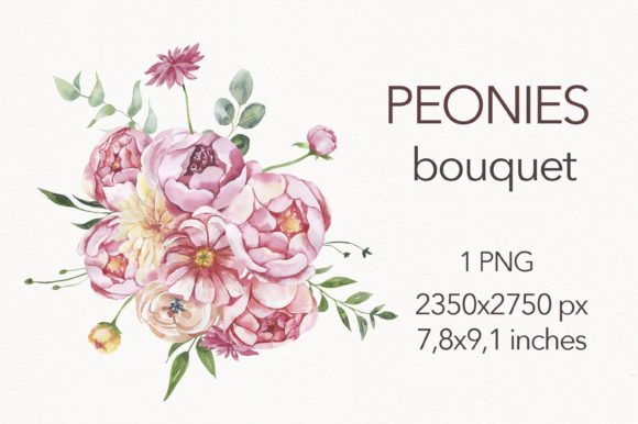 Watercolor Peonies Bouquet Clipart . Graphic Illustrations By olesiafrolowa
