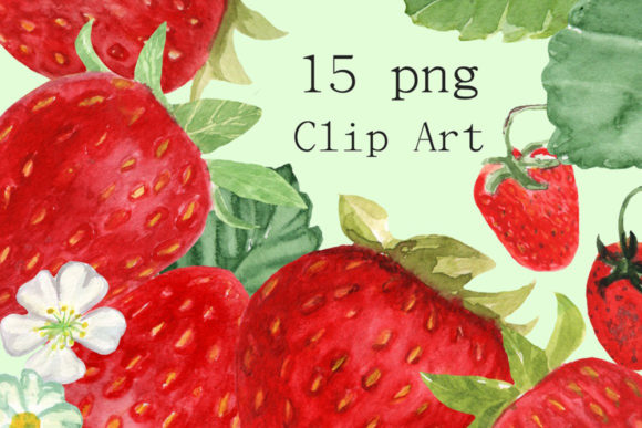 15 Watercolor Strawberries Clip Art Graphic Illustrations By tatibordiu