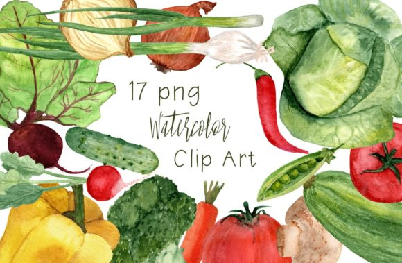 17 Watercolor Vegetables Clip Art Graphic Illustrations By tatibordiu
