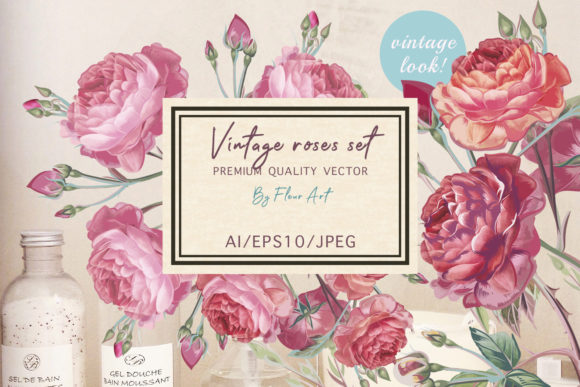 Pink Rose Vector Clipart Set Graphic Illustrations By fleurartmariia