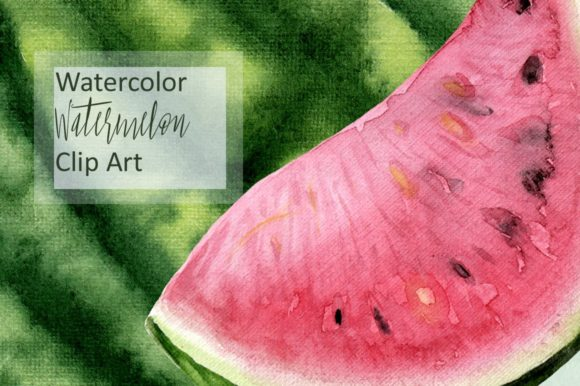 Watercolor Watermelon Clip Art Graphic Illustrations By tatibordiu
