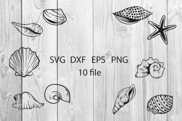 Seashell Cut File Svg Graphic Download