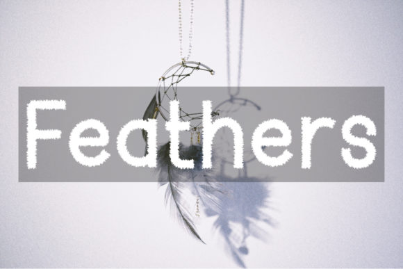 Print on Demand: Feather Display Font By Designvector10