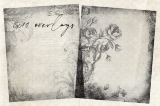 Floral Overlays 8x10 Graphic Illustrations By LilBitDistressed