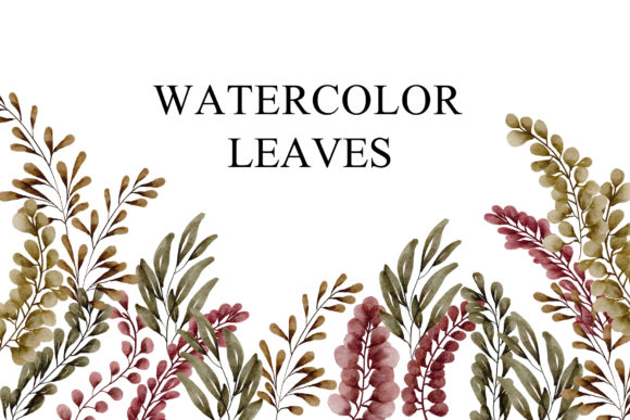 Print on Demand: Leaves Watercolor PNG Graphic Illustrations By goodigital