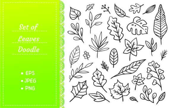 Set of Leaves Doodle Graphic