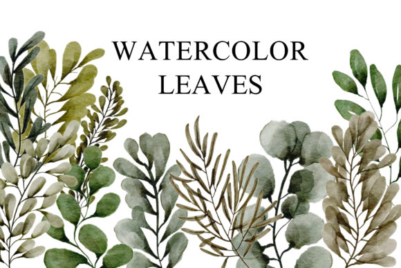 Print on Demand: Leaves Watercolor Collection Graphic Illustrations By goodigital
