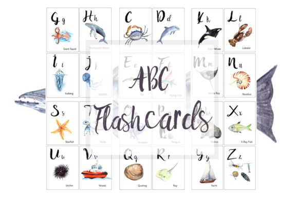 ABC Ocean Flashcards / Banner Graphic Illustrations By tatibordiu