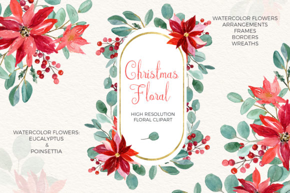 Christmas Eucalyptus and Poinsettia Graphic Illustrations By LABFcreations