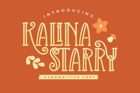 Print on Demand: Kalina Starry Decorative Font By Vunira