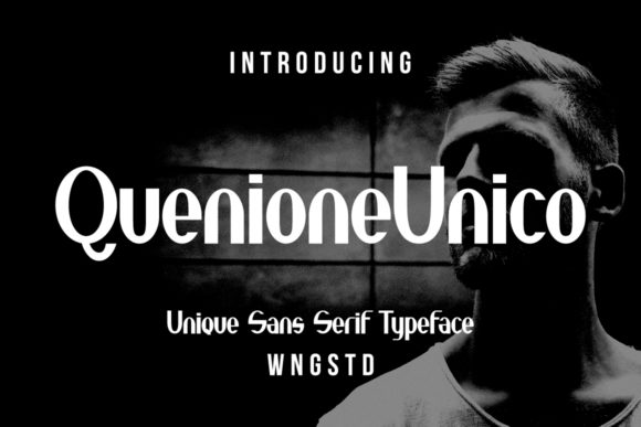 Print on Demand: Quenione Unico Sans Serif Font By WNGSTD