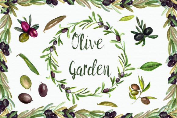 Watercolor Olive Garden Clip Art Graphic Illustrations By tatibordiu