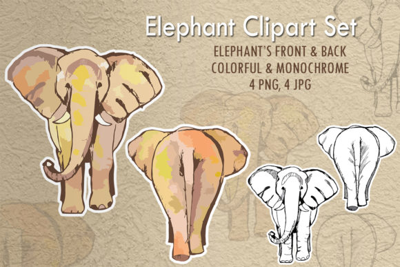 Elephant Clipart Set Graphic Illustrations By tobagu