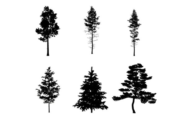 Print on Demand: 6 Pine Tree Photoshop Brushes Graphic Brushes By Miss Chatz