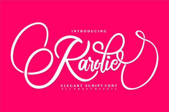 Print on Demand: Karolie Script & Handwritten Font By Vunira