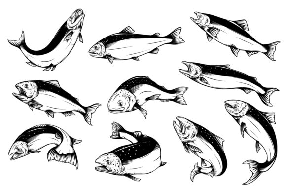 Salmon Sublimation Graphic Illustrations By TuleedinTattoo