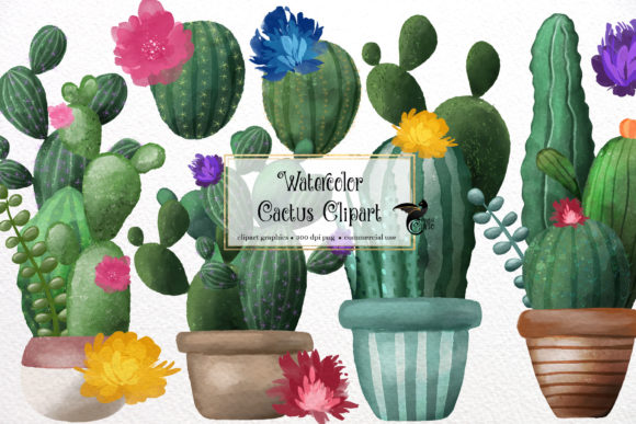 Watercolor Cactus Clipart Graphic