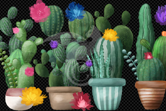 Watercolor Cactus Clipart Graphic Download