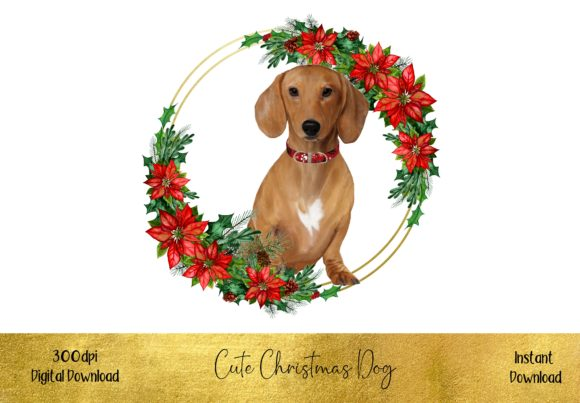 Cute Christmas Dacshund Graphic Illustrations By STBB
