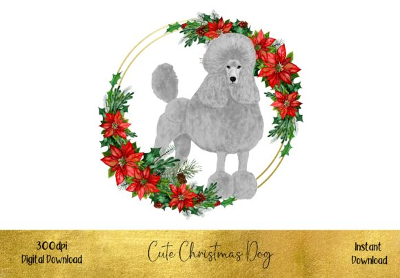 Cute Christmas Poodle Graphic Illustrations By STBB