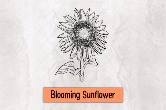 Blooming Sunflower Graphic Crafts By TakeNoteDesign
