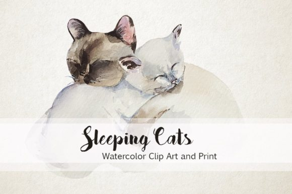 Watercolor Sleeping Cats Graphic Illustrations By tatibordiu