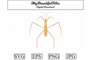 Print on Demand: Water Strider Clipart Illustration Graphic Illustrations By MyBeautifulFiles