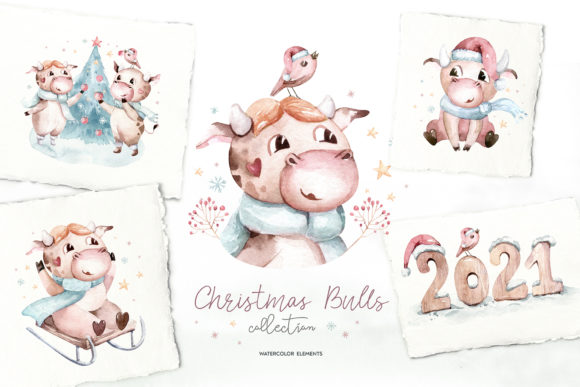Christmas Cute Bulls Collection! Graphic Illustrations By kristinakvilis