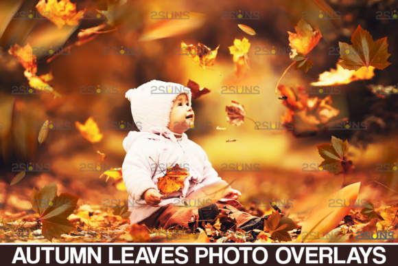 Leaf Overlay & Photoshop Overlay Fall Graphic Actions & Presets By 2SUNS