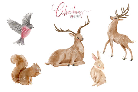 Woodland Christmas Illustrations Graphic Download