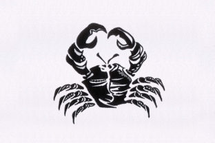 Artistically Crab Fish & Shells Embroidery Design By DigitEMB