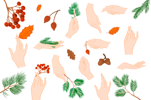 Hands with Christmas Tree Branch Graphic Illustrations By CuteShopClipArt