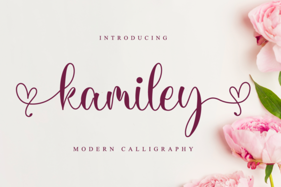 Print on Demand: Kamiley Script & Handwritten Font By NissaStudio