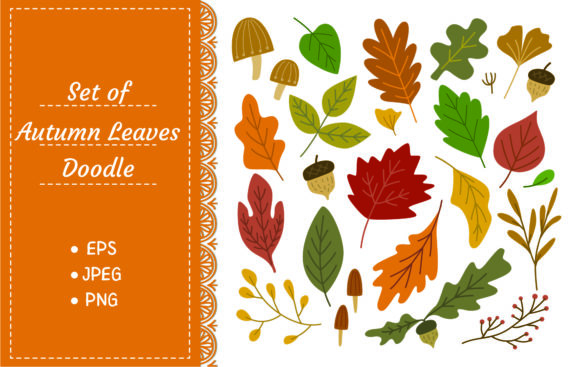 Set of Autumn Leaves Design Element Graphic Illustrations By Big Barn Doodles